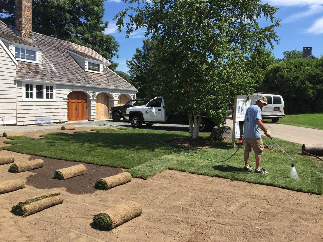 Lawn Installation Ambidextrous Inc Landscaping Ambidextrous